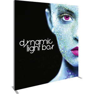 Vector Frame Master Dynamic Light Box Rectangle 03