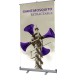 Giant Mosquito Retractable Banner Stand
